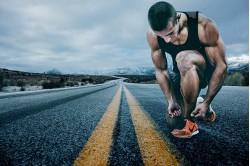 Máster Deportivo Online en Musculación y Fitness, Nutrición y Coaching